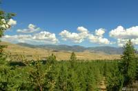 1 Virginia Ridge