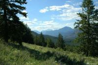 1 Wolf Creek