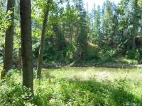 1045 Twisp River Rd  98856