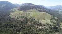 234 Mountainside Wy  98862