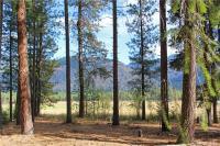 3 Alpine Valley Lot 3&4  98833